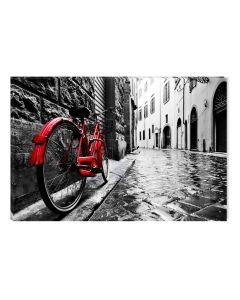 Tablou Alb-Negru Abstract Startonight, Bicicleta rosie, luminos in intuneric, 60 x 90 cm