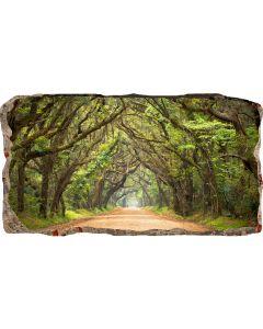 Fototapet 3D Startonight Tunel de copaci, luminos in intuneric, 2.20 x 1.20 m