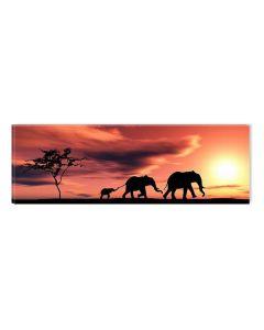 Tablou DualView Startonight Familie de elefanti, luminos in intuneric, 40 x 120 cm