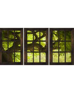 Fototapet Startonight Fereastra spre o dimineata proaspata, luminos in intuneric, 1.80 x 1.20 m