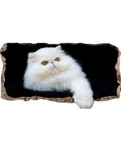 Fototapet 3D Startonight Pisica alba, luminos in intuneric, 2.20 x 1.20 m