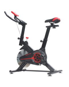 Bicicleta spinning Energy Fit EF100
