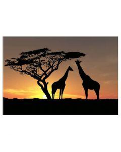 Tablou panza canvas modern pentru decor peisaj african cu girafe la apus de soare 80x60cm VSR4034
