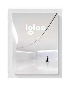 Igloo - Habitat si arhitectura - Iunie, Iulie 2017