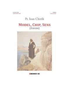 Model, chip, sens - Ioan Chirila