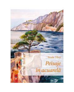 Peisaje in acuarela - Brada Tibor