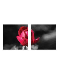Tablou canvas 2 piese - Boboc - 4Decor